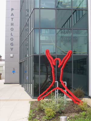 'Starjumper' installed at Royal Oldham Hospital